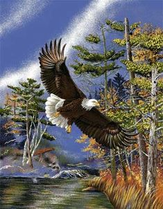 Flying Eagle (Q)