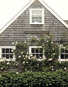 Exterior siding white cedar and cedar shingles on pinterest for Nantucket shingles