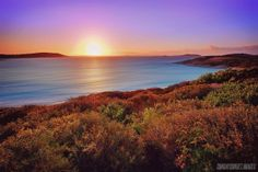 Sunrise over blue haven beach in esperance, WA