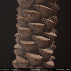 ArtStation - Palm Tree - Substance Designer , Mohamed Gamal