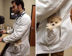 Hot guy & cute puppy