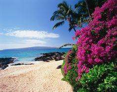 Image for Hidden Cove, South Maui Coast