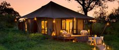 Ngala Tented Camp| Specials 4 Africa