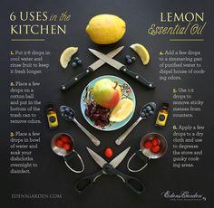 Lemon | Single Oils | Edens Garden