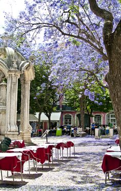 Jacarandás and restaurant terraces at the Largo do Carmo, #Lisbon city centre #Portugal http://www.cityisyours.com/explore