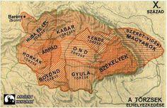 Hungary History, Bronn, Ww2, Turtle, Culture, Life, Animals, Albania, Army