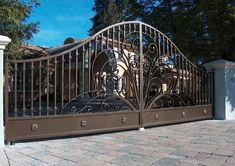 10 Latest Iron Gate Designs For House With Pictures In 2020