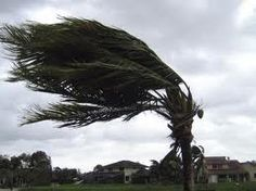 "Golf pros will tell you ""When it's breezy, swing easy.""  I would tell you ""When it's breezy, don't golf."""