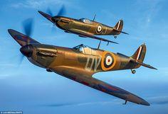 Shine: Spitfire N3200 (front) the oldest Spitfire still flying and now fully restored afte...