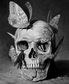 Dark Skull and Butterfly drawing. A wonderfully effective and contrasting image.