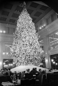 marshall fields walnut room, 1951