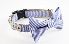 Blue Seersucker Bowtie Dog Collar