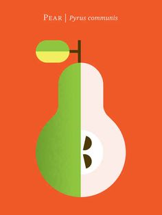 Pear | 12 Fruit And Vegetable Posters For Foodies