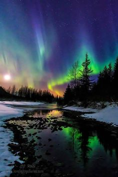 The Aurora Danced While The Moon Set In The Portage Valley. Photo By CJ Kale.