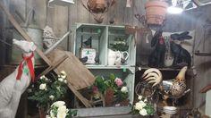 Garden Treasures Spring display at Molly's Den, Salisbury, Wiltshire