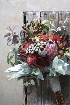 Swallows Nest Farm is part of Bush wedding - Protea Wedding, Bush Wedding, Floral Wedding, Wedding Bouquets, Rustic Wedding, Wedding Flowers, Wedding Groom, Bouquet Bride, Australian Native Flowers