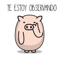 Hola Funny Images, Funny Pictures, Sketch Manga, Pig Art, Pusheen Cat, Cute Pigs, Little Pigs, Love Messages, Cool Logo