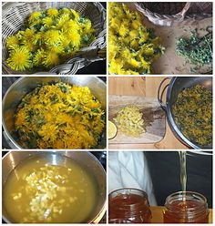 Syrop z mniszka nie tylko na kaszel - Dandelion syrup Palak Paneer, Natural Remedies, Dandelion, Spices, Food And Drink, Herbs, Healthy Recipes, Homemade, Canning