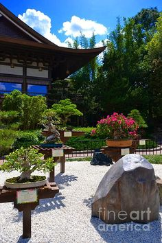 Bonsai Garden. I really love bonsai trees they a beautiful. Please check out my website thanks. www.photopix.co.nz
