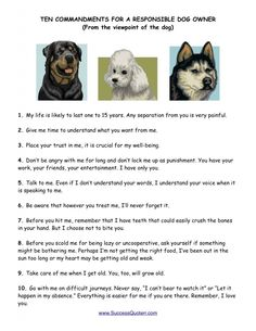 Ten Commandments for a Responsible Dog Owner (From the viewpoint of the dog)