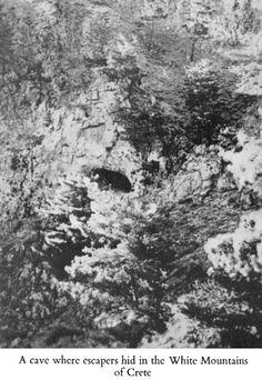 WH2-2Epi-l016a.jpg (435×632)