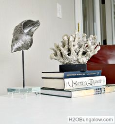 Gallery style seashell and sea life display ideas with pedestal stand: http://www.completely-coastal.com/2015/01/seashells-coral-driftwood-on-pedestal-stands.html