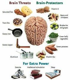 Brain Foods Healthy Brain, Healthy Tips, Healthy Habits, How To Stay Healthy, Healthy Recipes, Foods For Brain Health, Raw Recipes, Eating Healthy, Clean Eating