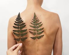 Realistic watercolor fern tattoo on the back | Rita from Kyiv, Ukraine (@rit.kit.tattoo)