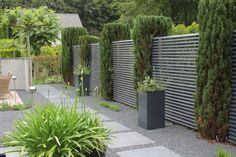 .Love the structured lines of these garden screens contrasting with the agapanthus in front!