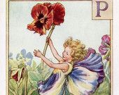Pansy Alphabet Letter P Flower Fairy Vintage Print, c.1940 Cicely Mary Barker Book Plate Illustration