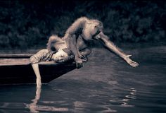 Gregory Colbert... the world as it should be.