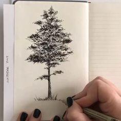 Baumzeichnung im Stift von Shannon Perrie (Perriewinkles) Tree Drawings Pencil, Pencil Art Drawings, Realistic Drawings, Art Drawings Sketches, Simple Drawings, Beautiful Drawings, Cartoon Drawings, Animal Drawings, Stylo Art