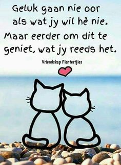 Afrikaanse Quotes, Goeie More, Canvas Quotes, Good Morning Wishes, Husband Love, Education Quotes, Beautiful Words, Beautiful Pictures, Christian Quotes