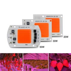 """HOT PRICES FROM ALI - Buy Hot real full spectrum indoor instead sunlight actual Power DIY led grow light chip for plants"""" from category """"Lights & Lighting"""" for only USD. Luz Solar, Led Diy, Led Grow Lights, Lampe Led, Sunlight, Cool Things To Buy, Garden Design, Chips, Indoor"""