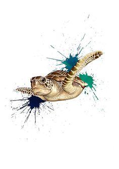 #illustration #ilustracion Tortuga marina by Sil Pons Caldero
