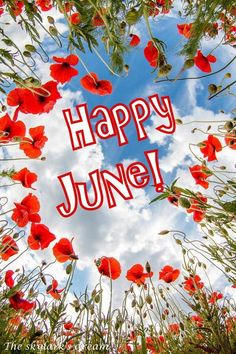 Happy June! Seasons Months, Days And Months, Months In A Year, 12 Months, Happy June, Happy Day, June Quotes, Monthly Quotes, Hello June