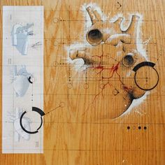 Federico Carbajal's Anatomical Architectural Drawings