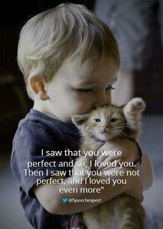 Love the photo; looks like mybGrandson Aden, who loves cats.