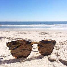 a11d52265c 386 Best Sunglasses are a must images