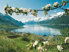 Hardangerlefse - Bremykt Stavanger, Machu Picchu, Norway In A Nutshell, Lillehammer, Jolie Photo, Plan Your Trip, Photos Du, Amazing Nature, Places To See