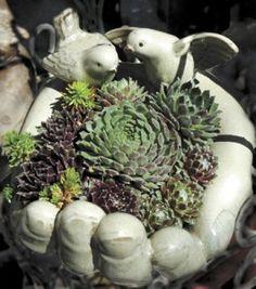 Always popular and eye catching in the garden are J. Woeste's charming succulent/ceramic garden arrangements.