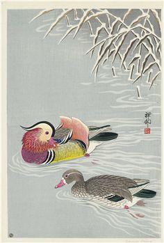 Japanese Art Print - Two Mandarin Ducks in Snow by Ohara Koson Japanese Art Prints, Japanese Art Styles, Illustrations, Illustration Art, Art Canard, Ohara Koson, Japan Painting, Japanese Folklore, Old Paintings