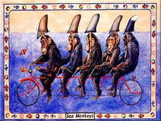 6x8 Animal Cartoon Pop Art Painting Sea Monkey Bicycle Custom Craft Ceramic Tile | eBay