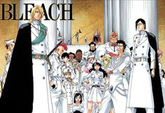 The Quincy Sternritters - Bleach