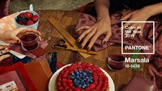 Pantone color of the year 2015 Marsala Most beautiful image