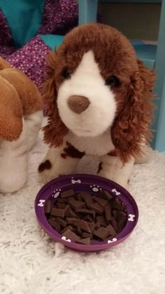 Make a Food Bowl for Your Doll's Pet