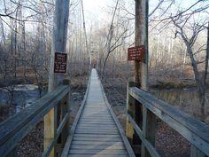 Eno River, North Carolina. Hiking adventures.