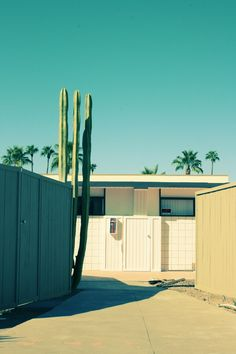 palm springs modern rancher sunbleach turquoise blue sky and cactus courtyard