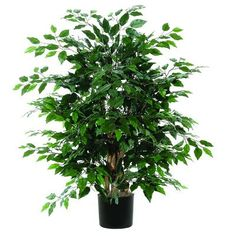 Vickerman 4' Artificial Focus Extra Full set in Black Pot >>> You can find more details by visiting the image link.