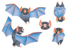 Character design for a vampire bat- for more work by Gina Shord visit…